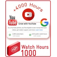 YouTube Channel Watch Time